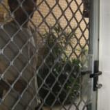craig-at-front-door1-300x225-160x160