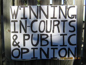 winning in courts