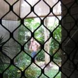 Craig Looking in Front Door